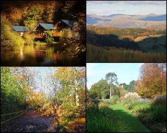 autumn-leaves-uk
