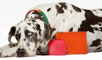 mulberry-collection-purses-dogs-1