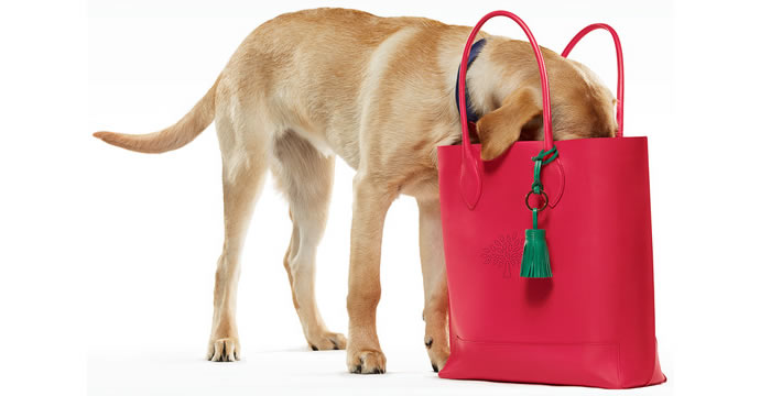 mulberry-collection-purses-dogs-2