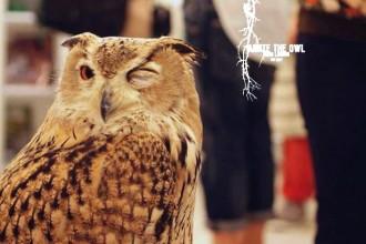 annie-the-owl-bar-london