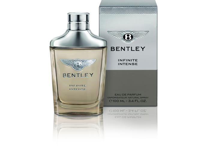 bentley-infinite-12