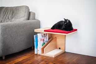 cat-furniture-2