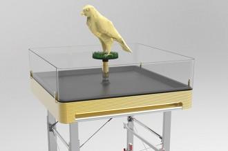 Lufthansa-Falcon-master