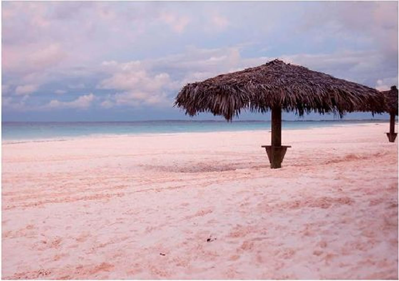 Pink Sands Beach Bahamas This In Isnt That Reason Enough To Pack And Leave For Serene Location A Lot Of Rich Famous People Would
