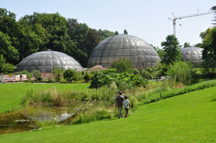 Botanical-Gardens-University-of-Zurich-2
