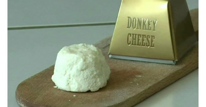 Donkeys-milk-makes-the-worlds-most-expensive-cheese-1