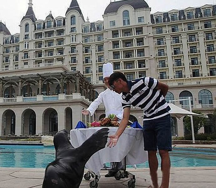 Chinese-boy-five-star-birthday-treat-for-sea-lion-1