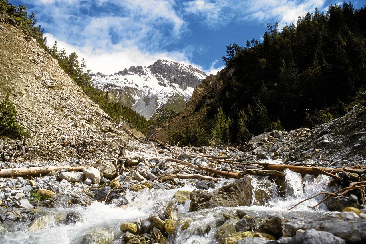Swiss-National-Park-St-Moritz-1