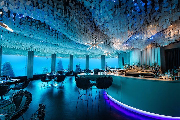 Dine with the fish at this stunning underwater restaurant in Maldives : Luxurylaunches