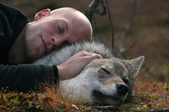 Norway Polar Park welcomes wolf-lovers 3