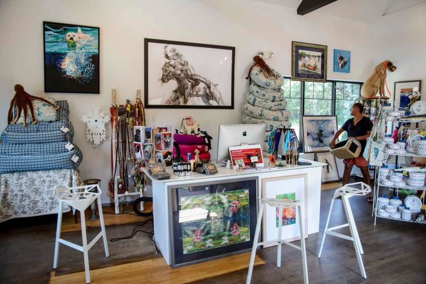 boutique for pups of the Hamptons 3