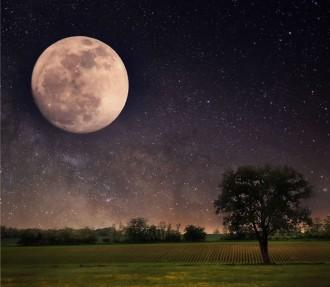 Elysium Space offers departed on Moon