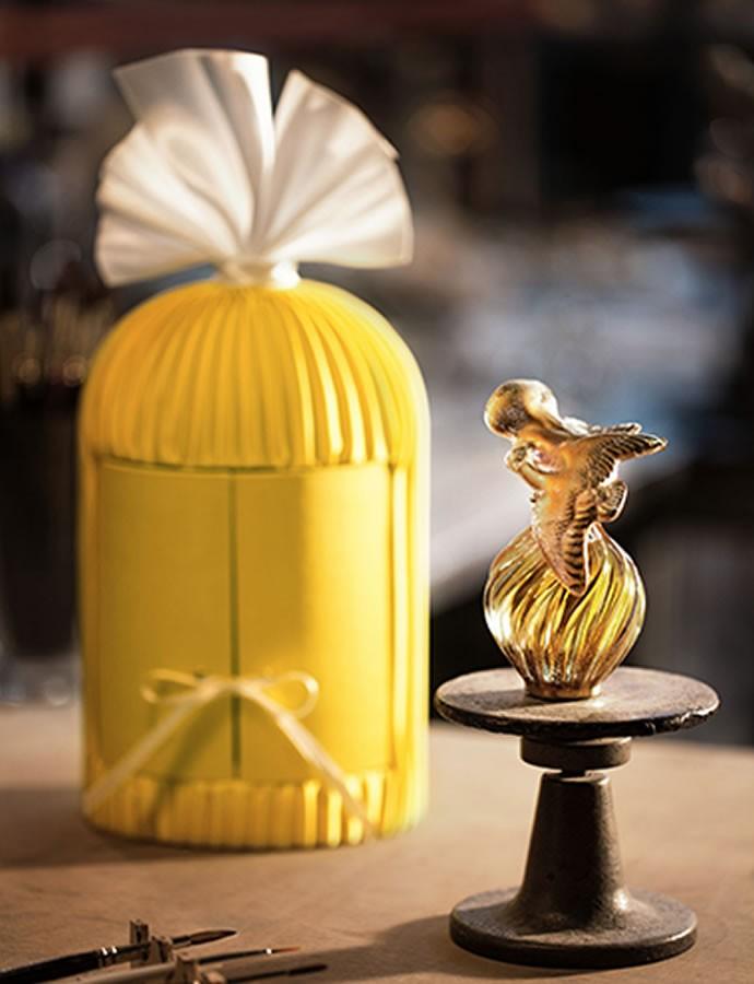 fragrance  (3)