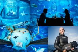 Paris-aquarium-1