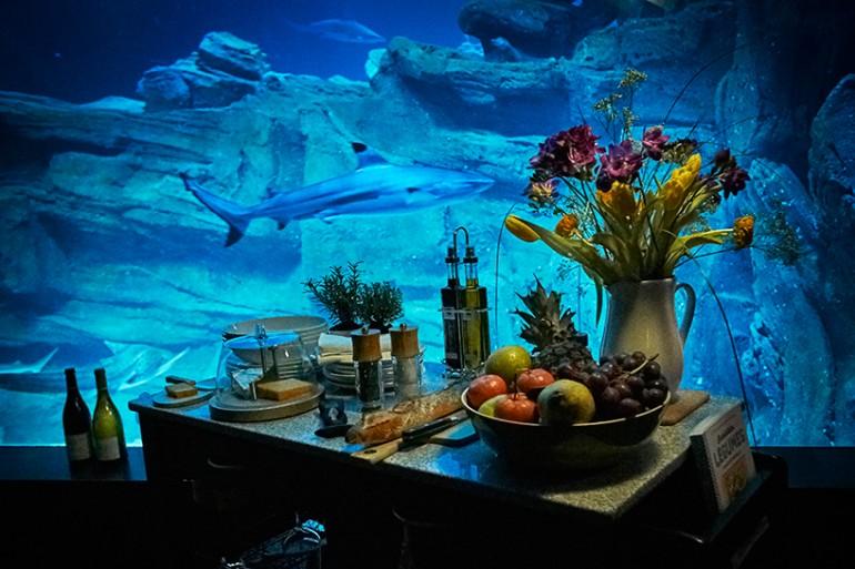 Paris-aquarium-1 (7)