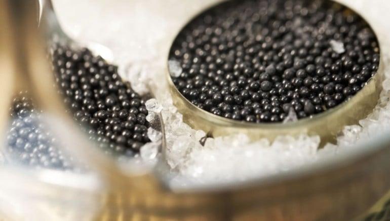 caviar-7