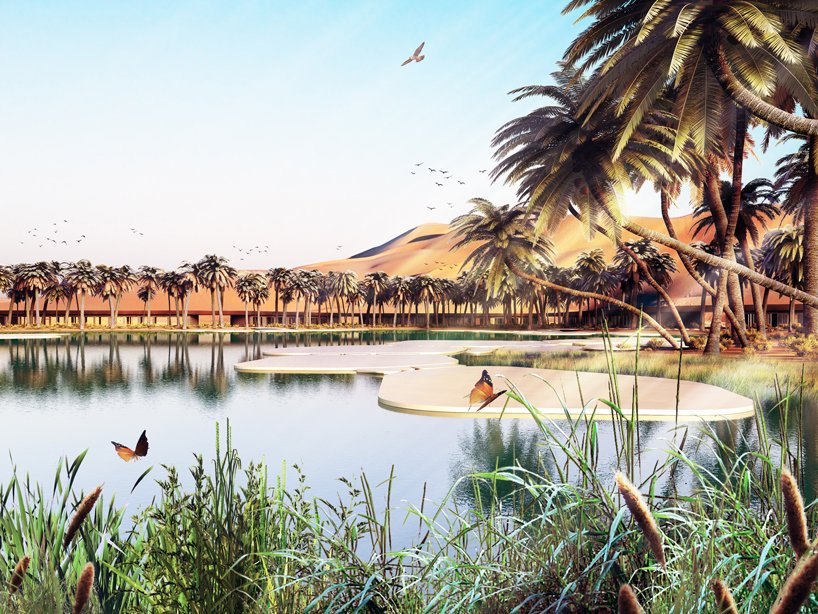 words greenest luxury resort UAE (3)