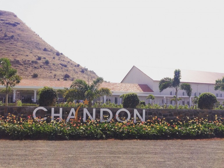 moet-chandon-winery (7)