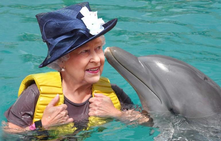 queen-elizabeth-ii-owns-dolphin
