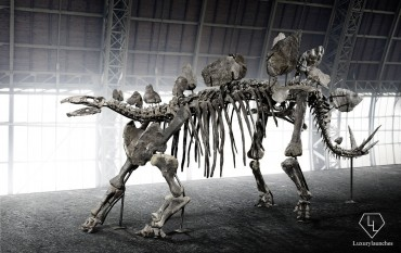 150-million-year-old-Stegosaurus-skeleton-Auction (2)