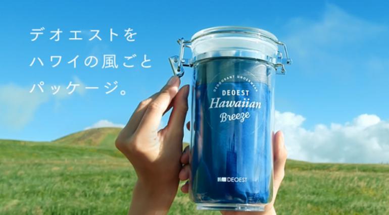 Japanese-Hawaiian-air-underwear  (2)