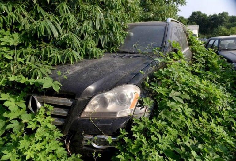 luxury_car_graveyard3