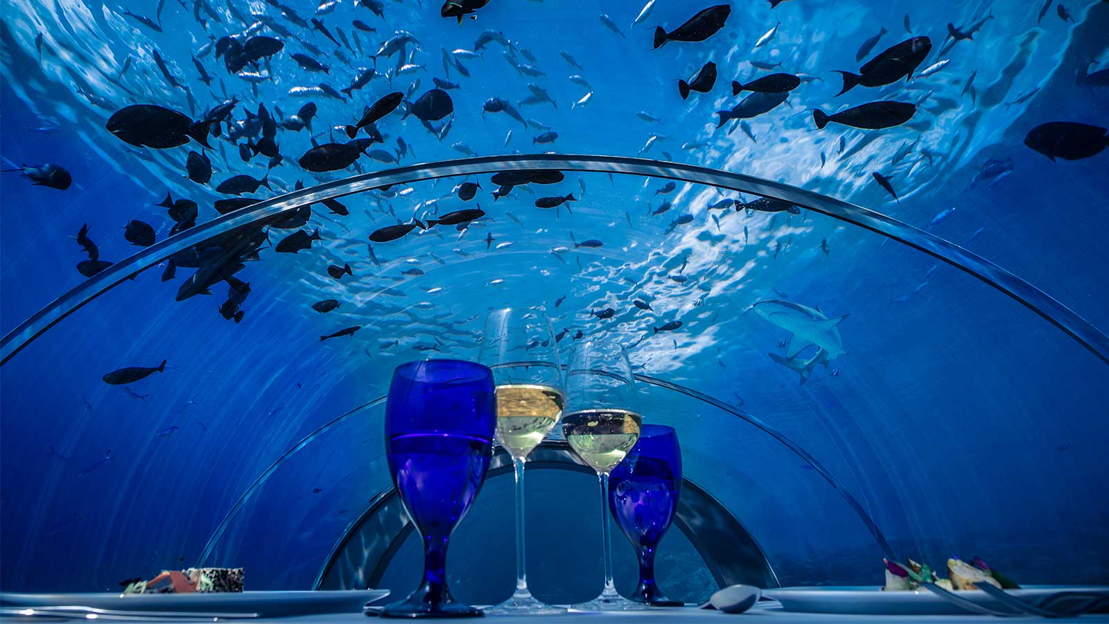 Maldives Set To Open The Worlds Biggest Underwater Restaurant In - Take a look inside europes first underwater restaurant