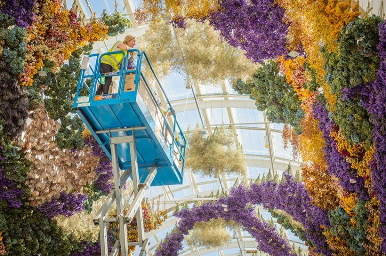 rebecca-louise-law-flower-canopy-eastland-melbourne (6)