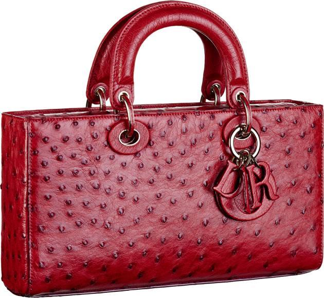 Dior Runway bag (3)