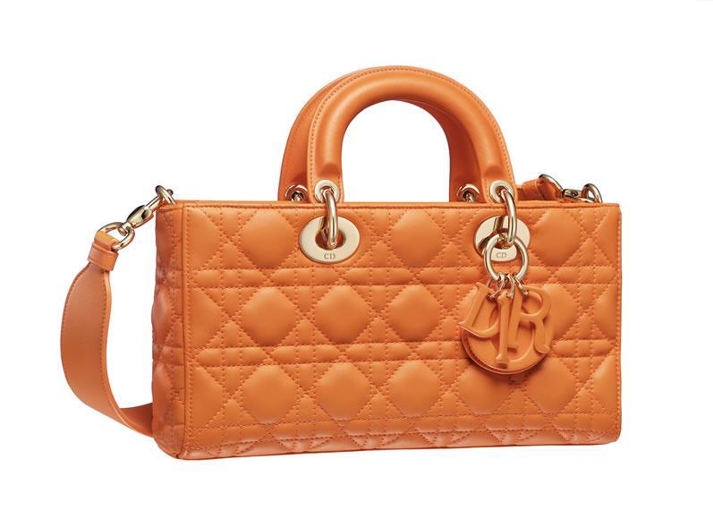 Dior Runway bag (4)