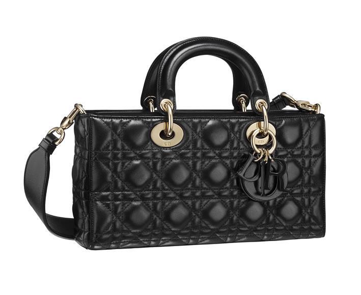 Dior Runway bag (8)