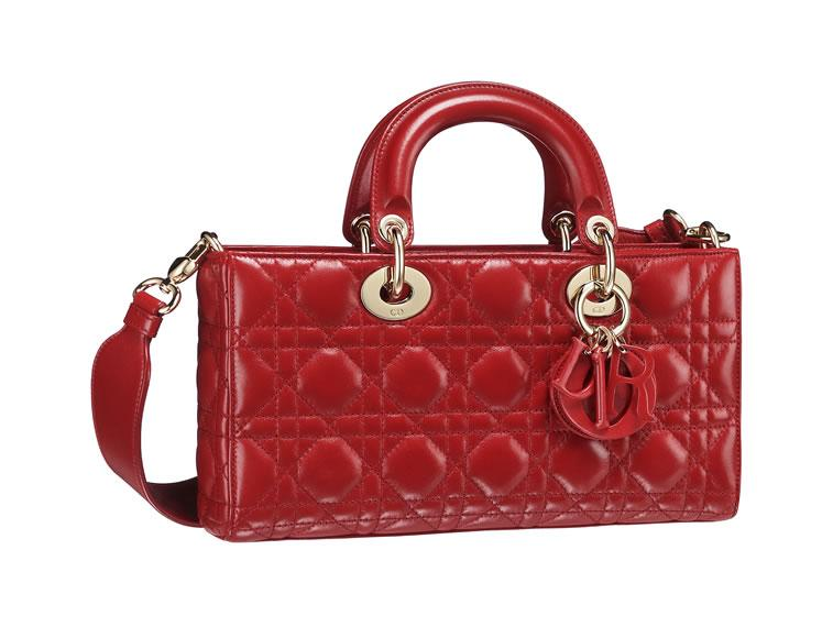 Dior Runway bag (9)