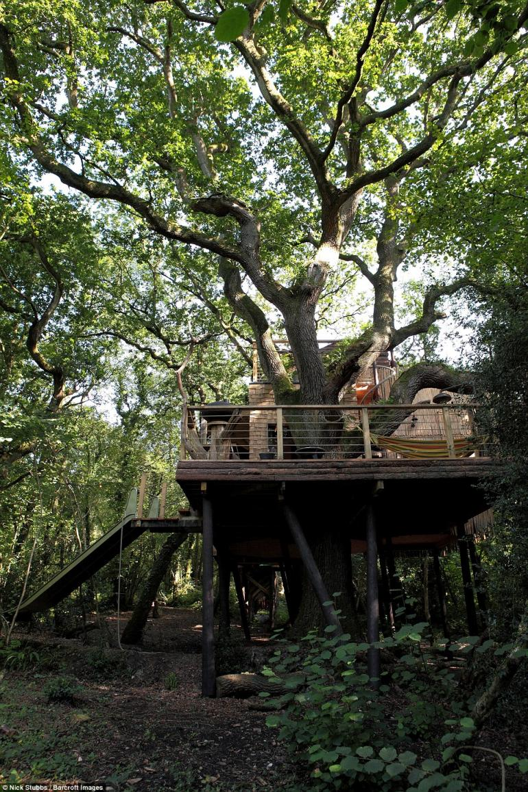 luxury-treehouse-2