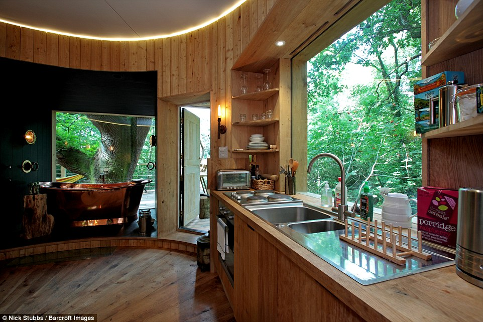 Is This The Worlds Most Luxurious Tree House