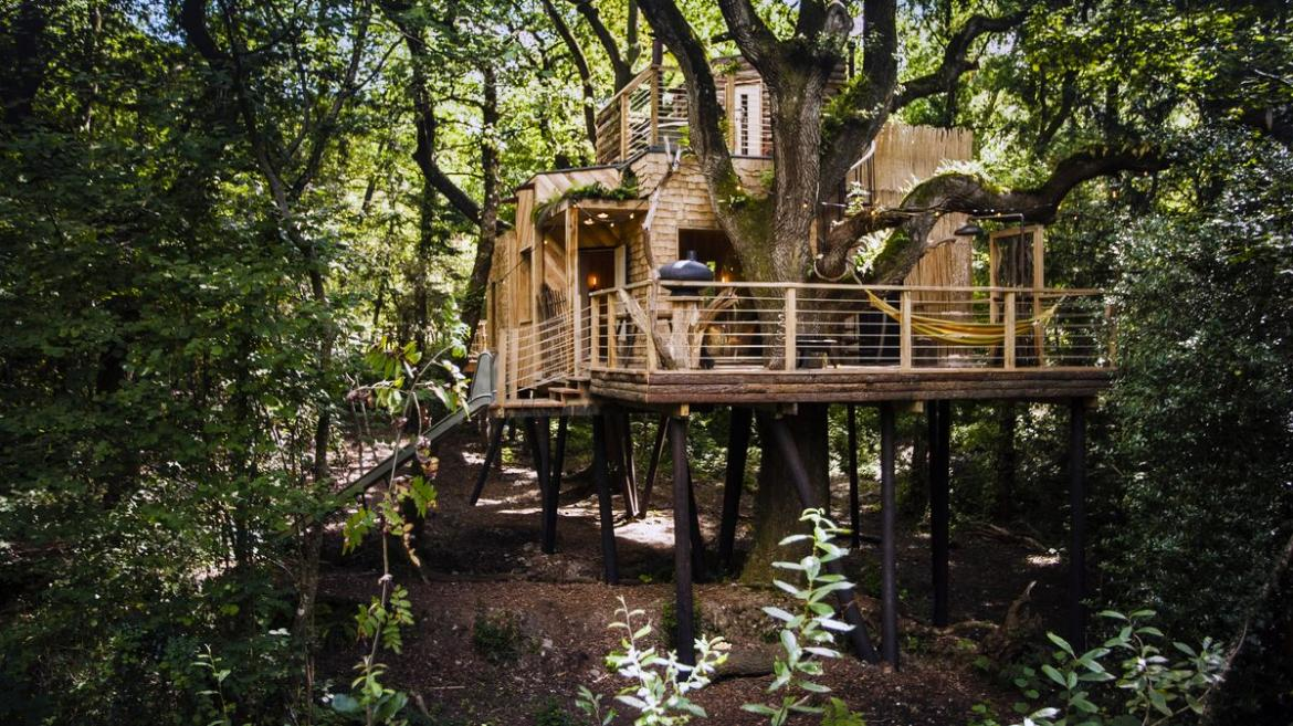 located in a forest in the county of dorset is the woodsmans treehouse created by guy - Most Expensive Tree House In The World