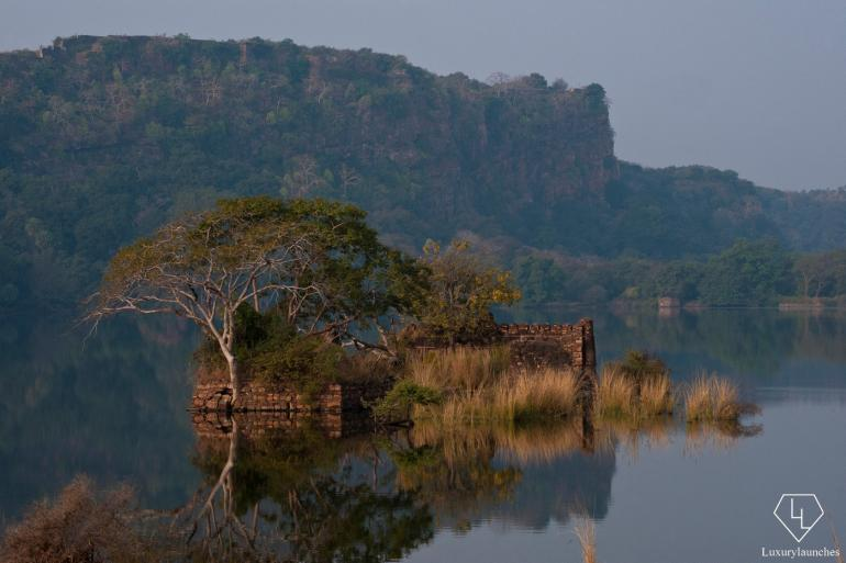 Lake inside Ranthambore National Park