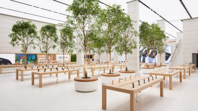 Lots Of Trees And Sunlight Inside London S Newest Apple