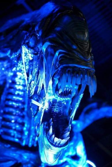 alien-queen-replica-7