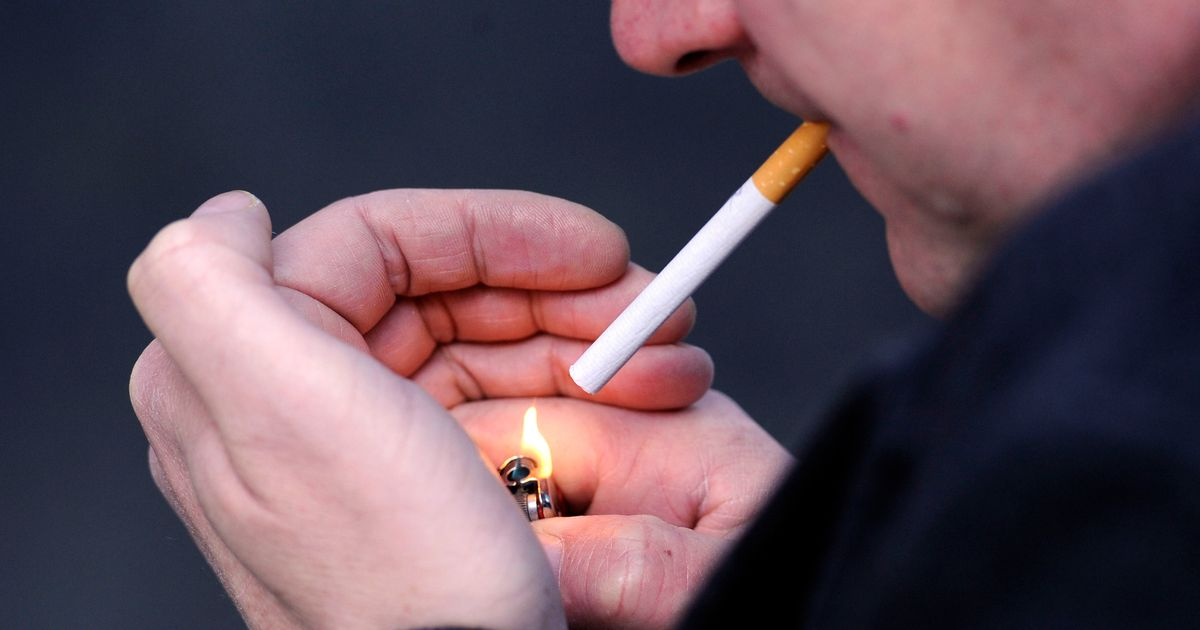 research paper on smoking tobacco Tobacco advertising policy research papers examine the history, and its emergence into our society in the 1960's up through the 1980's.