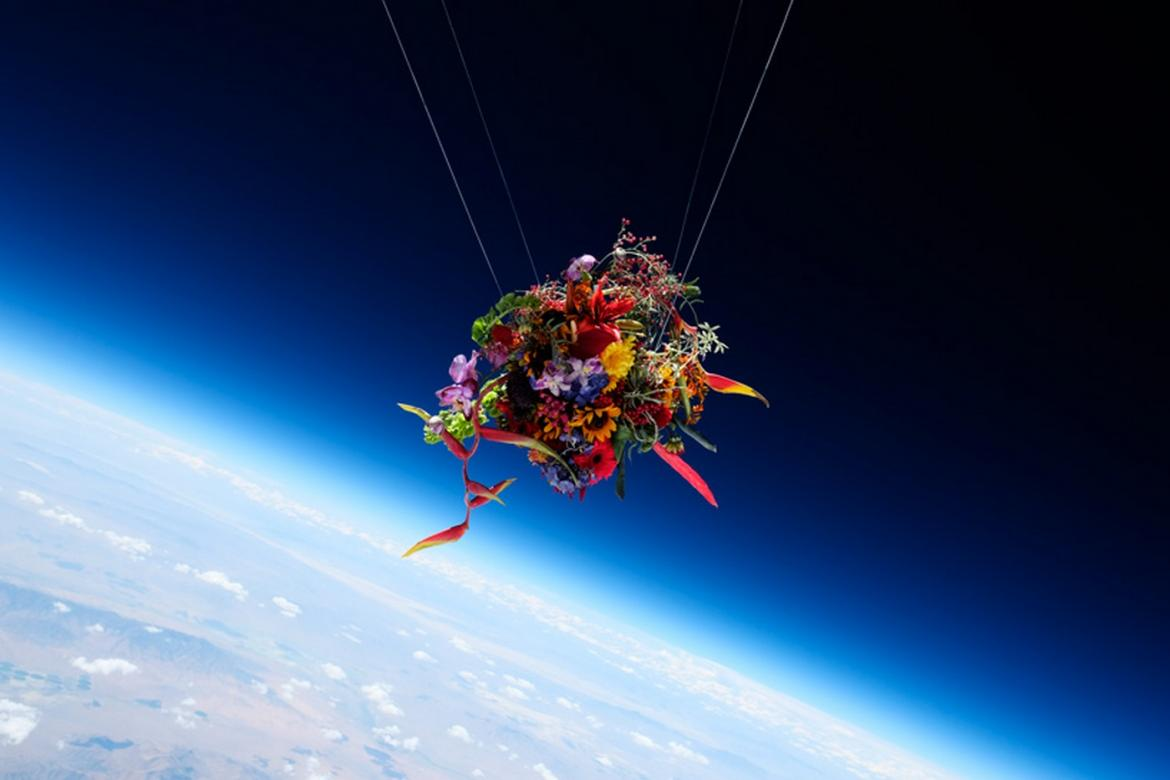 Japanese Flower Artist Sends Flowers Into Space And Then Photographs