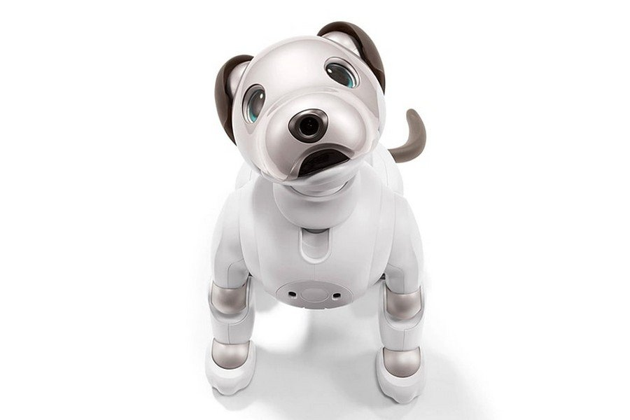 Sony Has Just Announced A New Aibo Robotic Pooch And It S