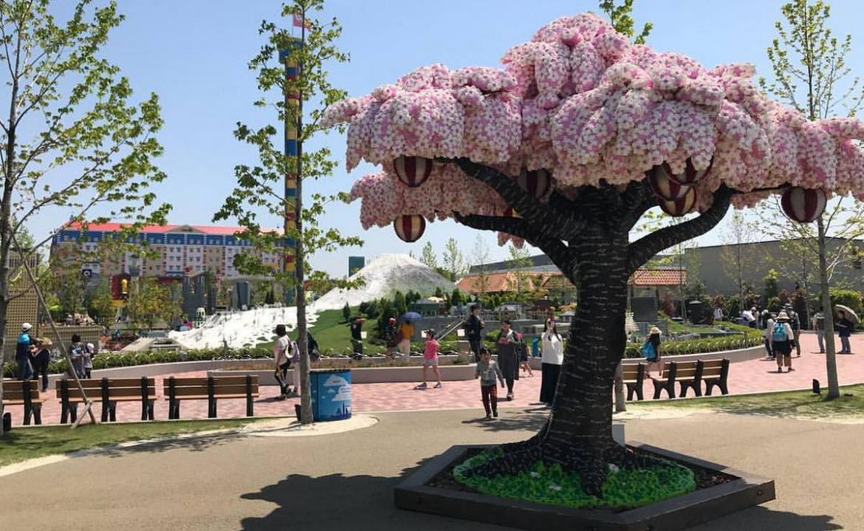 Legoland japan ora ha un albero sakura in piena regola for Sakura albero