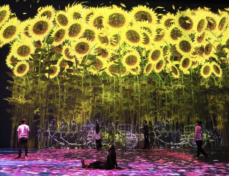 teamlab-paris (4)