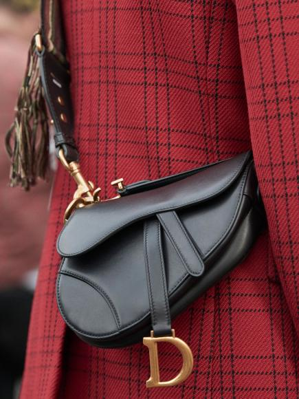 Dior saddle bag (2)