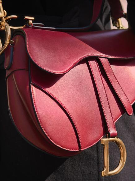 Dior saddle bag (7)