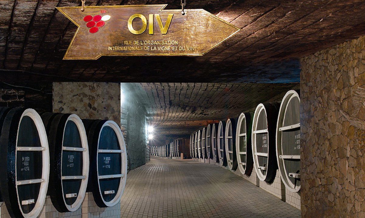 Take A Look Inside The Worlds Largest Wine Cellar Which