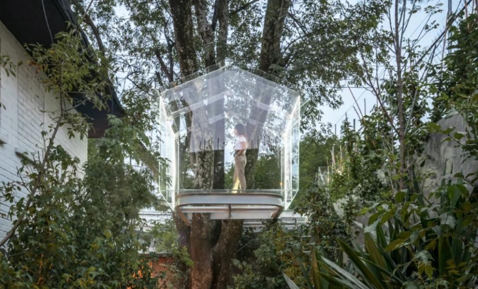 gerardo broissin glass treehouse mexico city (1)