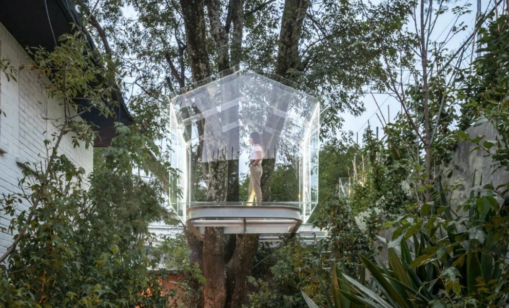 Check out this transparent glass treehouse in Mexico that is surrounded by a lush micro forest -