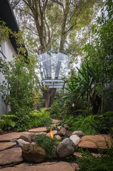 gerardo broissin glass treehouse mexico city (2)