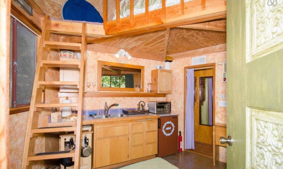 Most-Popular-Airbnb-Mushroom-Dome-Cabin-5-1020x610